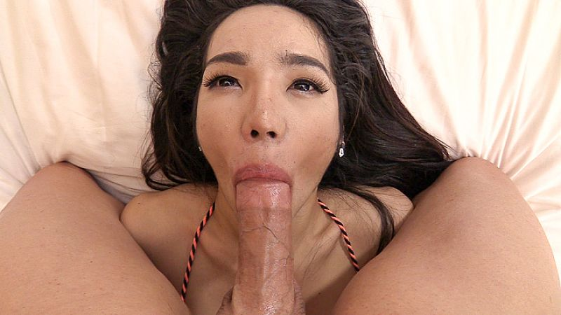 Latest Ladyboy Hardcore Video Update